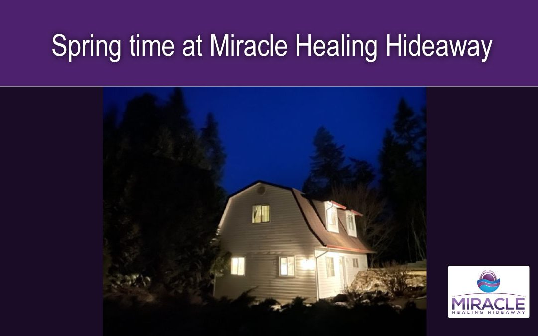 Spring time at Miracle Healing Hideaway